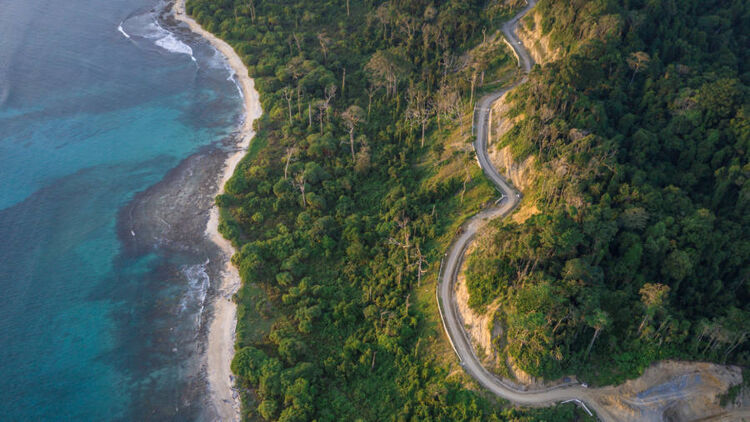 aerial photography of road by trees and and shore during daytime